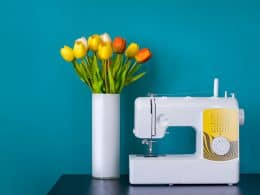 Best Mechanical Sewing Machine Reviews